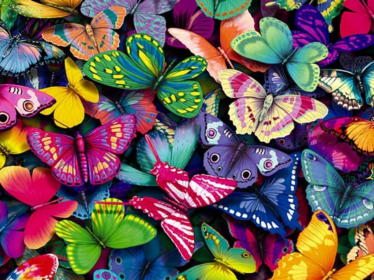 http://www.justcraftyenough.com/wp-content/uploads/2013/10/Butterflies-yorkshire_rose-15990936-1280-960.jpg